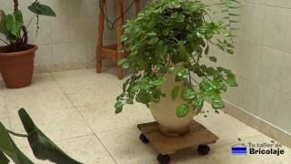 base de madera con ruedas para macetas